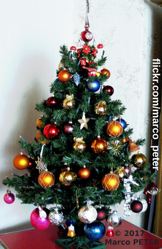 Weihnachtsbaum 2017 (Photo No. 1)
